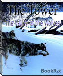 The Tower: The Valley of the Wolves