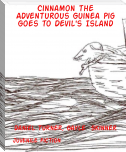 Cinnamon the Adventurous Guinea Pig Goes to Devil's Island