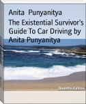 The Existential Survivor's Guide To Car Driving by Anita Punyanitya