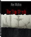The Ship Wreck