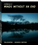Minds without an end
