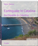 Earthquake In Catalina