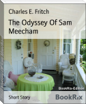 The Odyssey Of Sam Meecham