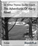 The Adventures Of Harry Revel