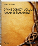 DIVINE COMEDY, VOLUME 3, PARADISE [PARADISO]