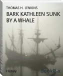 BARK KATHLEEN SUNK BY A WHALE