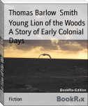 Young Lion of the Woods A Story of Early Colonial Days