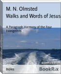 Walks and Words of Jesus