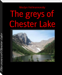 The greys of Chester Lake