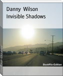 Invisible Shadows