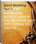 A GUIDE TO AUGMENTING BUSINESS LEADS BY COLLABORATING WITH PROFESSIONAL SEO SERVICES