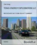TEXAS ENERGY EXPLORATION LLC
