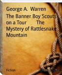 The Banner Boy Scouts on a Tour        The Mystery of Rattlesnake Mountain