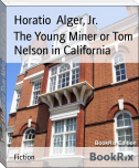 The Young Miner or Tom Nelson in California