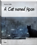 A Cat named Moon