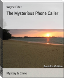 The Mysterious Phone Caller