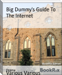 Big Dummy's Guide To The Internet