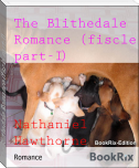 The Blithedale Romance (fiscle part-I)