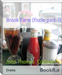 Brook Farm (fiscle part-I)