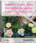 Bidwell's Travels, From Wall Street To London Prison (Fiscle Part-Xi)