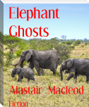 Elephant Ghosts