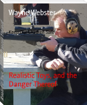 Realistic Toys, and the Danger Thereof