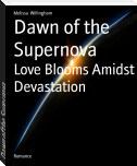 Dawn of the Supernova