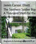 The Southern Soldier Boy A Thousand Shots for the Confederacy