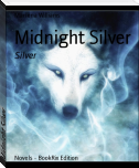 Midnight Silver