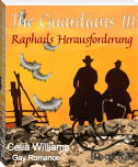 The Guardians III - Raphaels Herausforderung