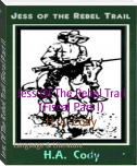 Jess Of The Rebel Trail (Fiscal Part I)