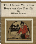 The Ocean Wireless Boys on the Pacific