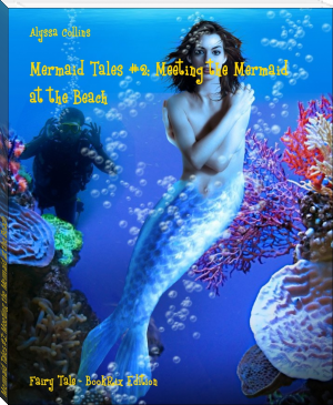 Mermaid Tales #2: Meeting the Mermaid at the Beach