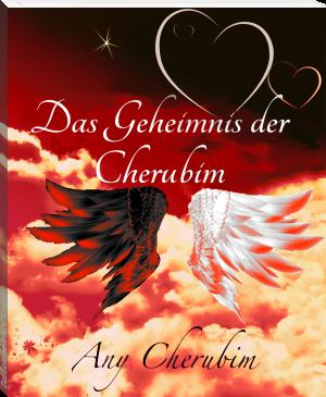 """Buchcover Any Cherubim - """"Der geheimnisvolle Cherubim"""""""
