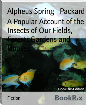 A Popular Account of the Insects of Our Fields, Forests,Gardens and Houses