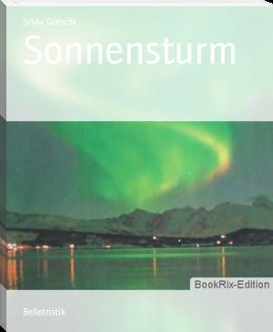 "Buchcover Silvia Götschi ""Sonnensturm"""