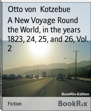 A New Voyage Round the World, in the years 1823, 24, 25, and 26, Vol. 2