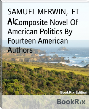 A Composite Novel Of American Politics By Fourteen American Authors