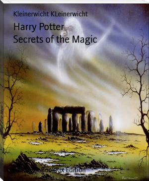 Harry Potter                            Secrets of the Magic