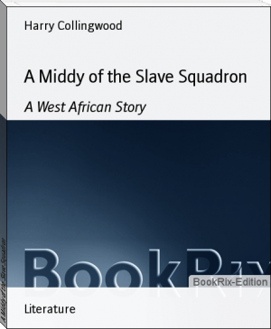 A Middy of the Slave Squadron