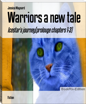 Warriors a new tale