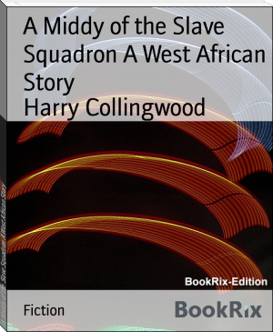 A Middy of the Slave Squadron A West African Story