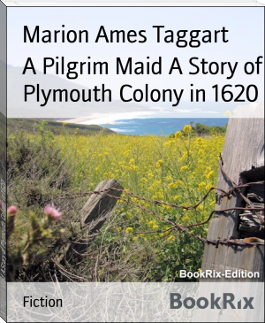 A Pilgrim Maid A Story of Plymouth Colony in 1620