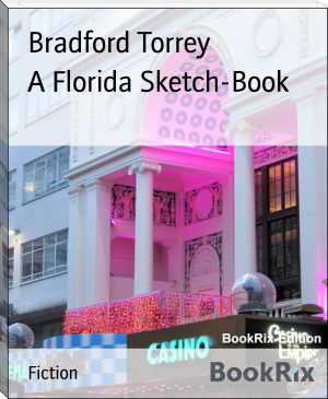 A Florida Sketch-Book