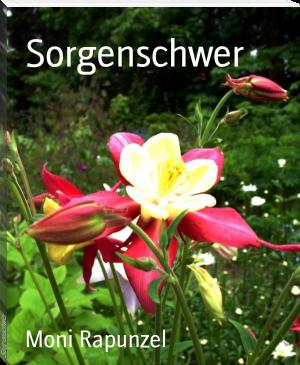 """Buchcover Monirapunzel """"Sorgenschwer"""""""