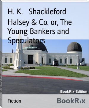 Halsey & Co. or, The Young Bankers and Speculators