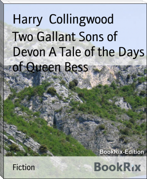 Two Gallant Sons of Devon A Tale of the Days of Queen Bess