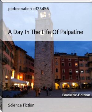 A Day In The Life Of Palpatine