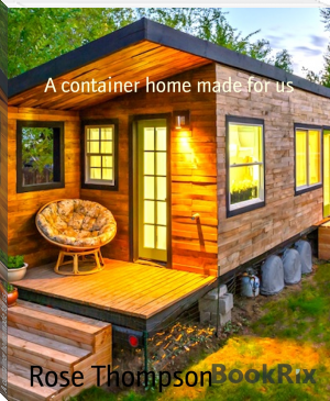 A container home made for us