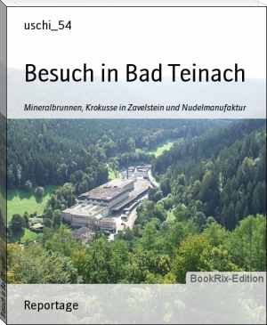 Besuch in Bad Teinach